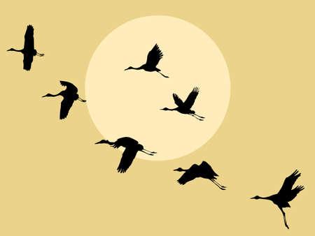 silhouette grue sur fond solaire, illustration vectorielle