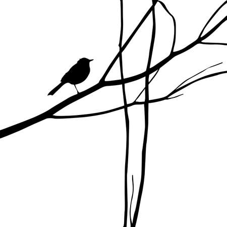 veréb: madár sziluettje fa elágazik, vektor, Ábra