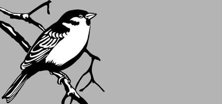 bird silhouette on gray background, vector illustration Stock Vector - 13033458