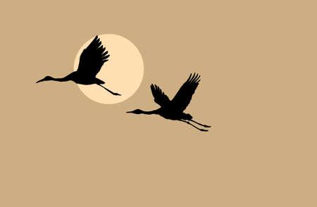 crane bird: crane silhouette on solar background, vector illustration