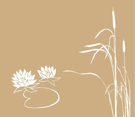 кувшинка: кувшинка и камыш на коричневом фоне, векторная иллюстрация Иллюстрация