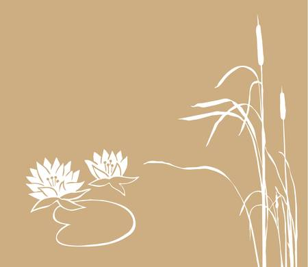 bulrush: water lily and reed on brown background, vector illustration