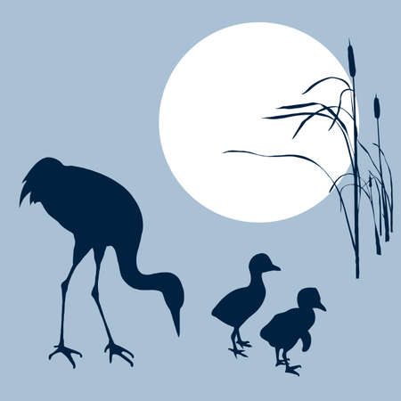 bulrush: crane with nestling silhouette on solar background, vector illustration