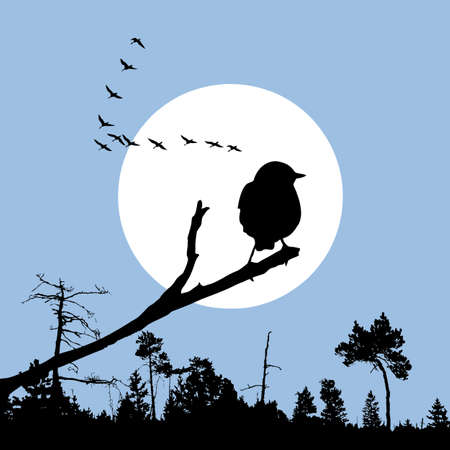 bird on branch silhouette on solar background, vector illustration Vector