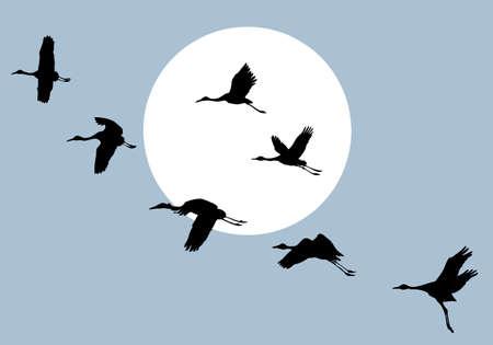 flying crane on solar background, vector illustration Illustration