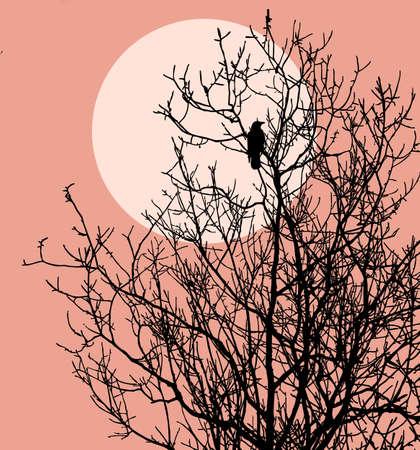against the sun: bird silhouette on solar background, vector illustration