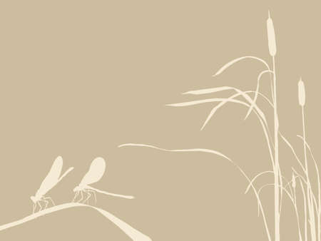 spoiled frame: two dragonflies on brown background, vector illustration