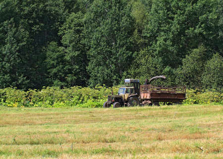 old tractor on summer field photo