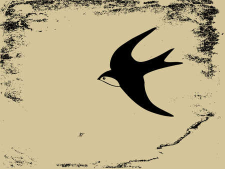 outline bird: swallow silhouette on  grunge background