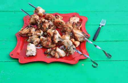 shish kebab on tray on green table photo