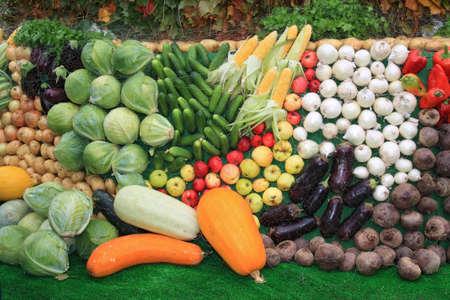 vegetable set on rural market photo