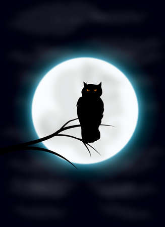 Spooky night and owl silhouette