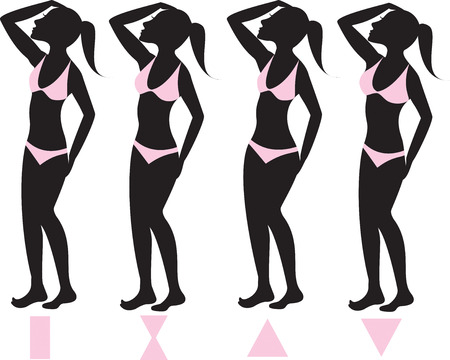 Vector Illustration of four basic female body types with pink bikini swimsuits illustrated on silhouettes with body shapes below. Vector