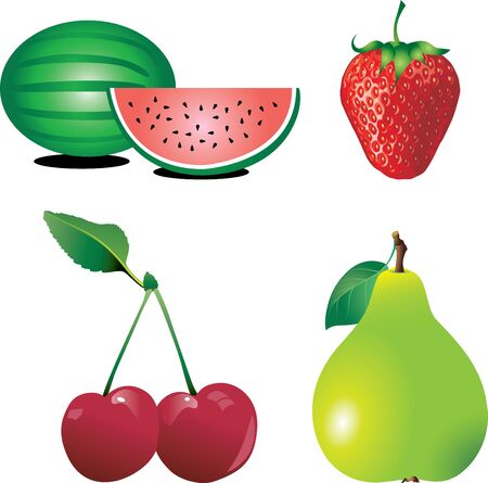 Vector Illustration of Fruit 2. Four types of fresh fruit isolated.