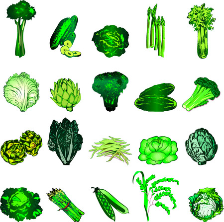 Illustration of 20 green vegetable icons.
