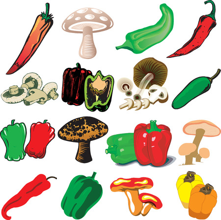 Illustration of 16 different Mushrooms and Peppers Иллюстрация