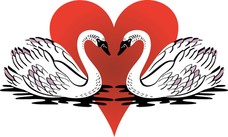 Vector Illustration of love swans swimming with red heart. Vector