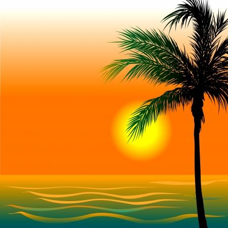 日没または日の出の間にビーチ背景 4 のイラスト。