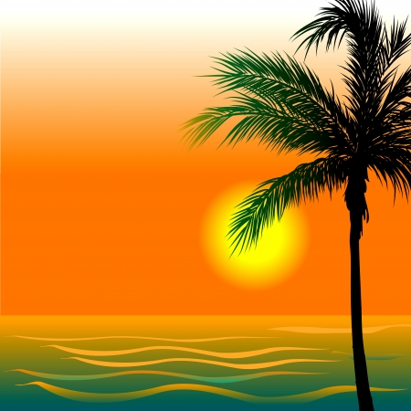 Illustration of Beach Background 4 during sunset or sunrise. Vector