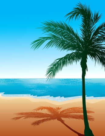 hawaii islands: Illustration of Beach Background
