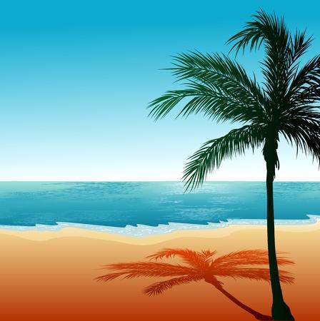 ビーチの背景イラスト  イラスト・ベクター素材