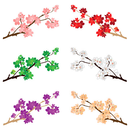Vector Illustration of various blossoms and flowers. Stock Illustratie