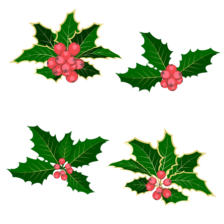Christmas symbol holly. Branch of holly with berries. Set. Isolated. White background