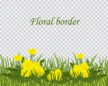 Green grass and flowers border, spring or summer greeting card decoration element,vector illustration isolated on transparent background. Easter decoration element with spring grass and dandelions