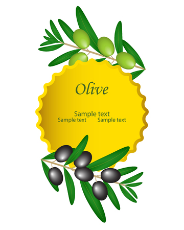 Olive oil vector decorative green and black olive branch, gold circle in the center. For labels, pack isolated on white background.