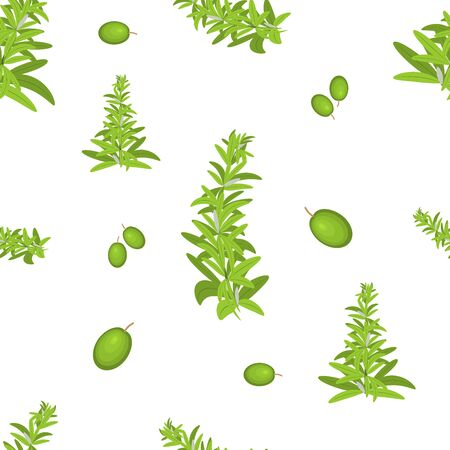 Herb and berry vector seamless pattern.Green rosemary branch and green olives. White background, isolated. Motifs scattered random.Printing with greenery.White background.Can be use for menu,packaging Ilustração