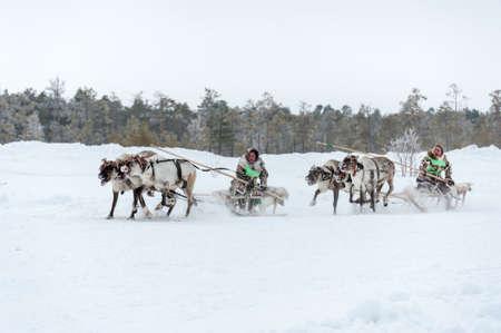 Russkinskie, Surgut, KhMAO-Ugra, Siberia, Russia, 2019.03.23. National holiday of reindeer herders, hunters, fishermen. Redakční