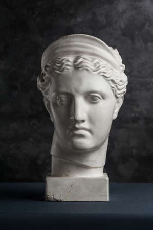 Gypsum copy of ancient statue Diana head on a dark textured background. Plaster sculpture woman face.