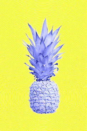 Contemporary art collage with pineapple. Exotic tropical fruit. Pop art. Perfect for invitations, greeting cards, posters. Banco de Imagens - 132118317