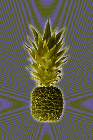 Contemporary art collage with pineapple. Exotic tropical fruit. Pop art. Perfect for invitations, greeting cards, posters. Toned.