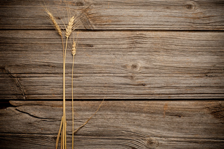 Wheat on wooden background with copy space. Stock Photo