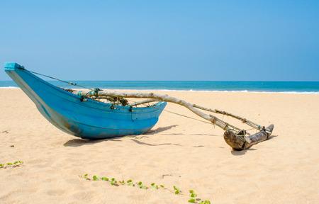 srilanka: Tropical beach with palms and fishing boats in Sri-Lanka