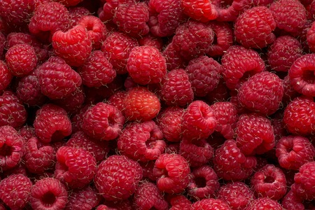 abundant: Raspberry fruit background close up . Top view