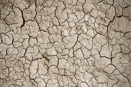 Dry cracked earth background, clay desert texture. Reklamní fotografie - 44244248
