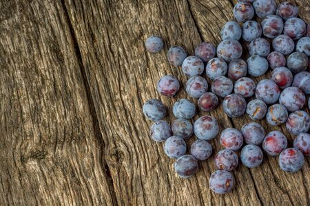 Autumn harvest. Plums on a rustic wooden background. Perfect plum. Lonely in the crowd - concept image.