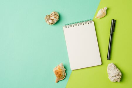 Sea shells with empty notebook on green background. Flat lay background