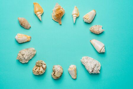 Flat lay. Top view. Frame of shells of various kinds on a blue background. Seashells and starfish on a pastel background.