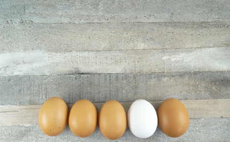 Brown chicken eggs and one white one at wooden background