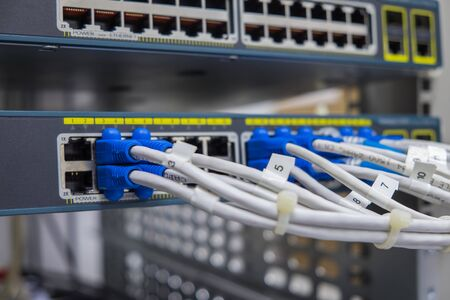 Lan Utp Cable Plug In Network Switch Stock Photo, Picture And ...