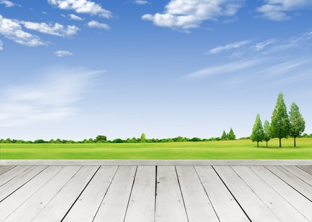 verandah: Wooden terrace looking out over a tropical cloud sky and green grass field Stock Photo