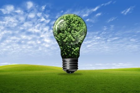 Bulb with tree isolated on white background , green eco concept