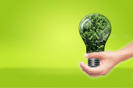 hand holding Bulb with tree inside isolated on green white background , green eco concept photo