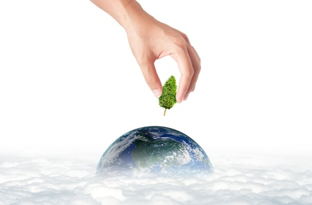 earth friendly: hand holding green tree for green eco concept Stock Photo