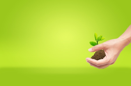 hand holding sprout with soil,green eco concept photo