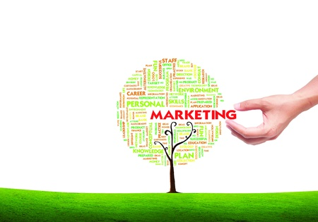 marketing plan: hand picking Business word cloud concept in tree form on isolated white background, Marketing