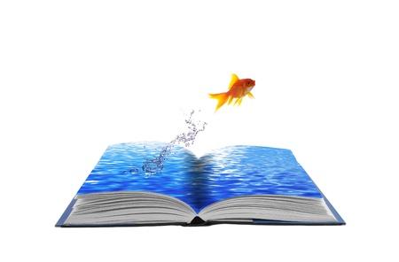 goldenfish: Golden fish jumping across water book, conceptual idea Stock Photo